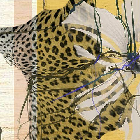 Wild Project - Lucía Hervás